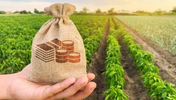 Taxation of income from agricultural land